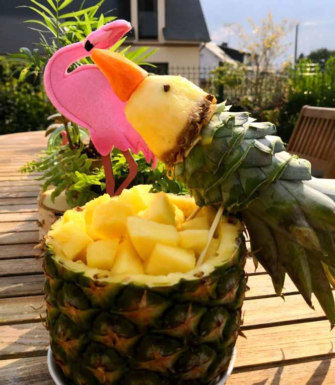 oiseau-ananas